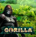 Gorilla - игровой устройство Горилла для заросли через Novomatic